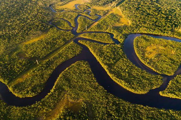 Ab in den Süden: Die Top 5 Böden aus Südamerika
