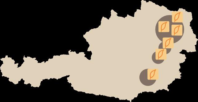 Wohngesund Filialen Österreichweit